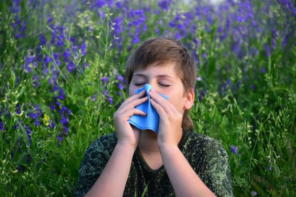 Záněty dýchacích ciest- alergie