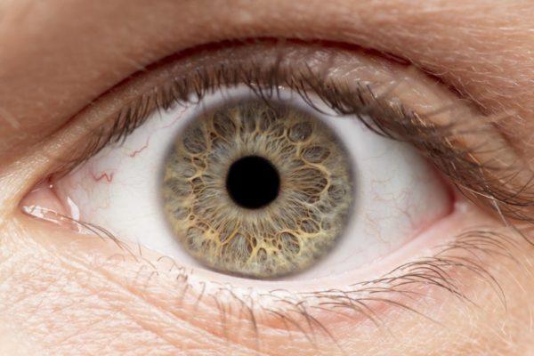 zánět očí
